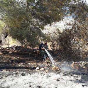 שרפה ביער הר תבור;