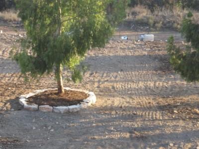 ממפגע נופי לפנינת טבע: המחצבה הנטושה בגניגר תחזור למטיילים