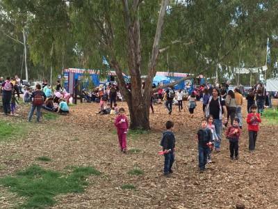 אדום עולה: אלפים ביקרו ביער הכלניות במגידו