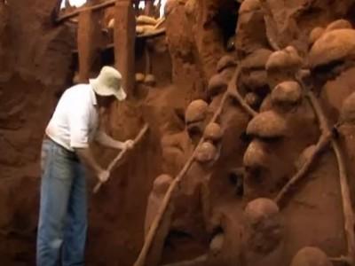 מדענים שפכו בטון לתוך קן נמלים. הם היו בהלם ממה שגילו אחר כך