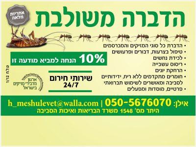 סובלים מנמלים ומקקים? קבלו מבצע!