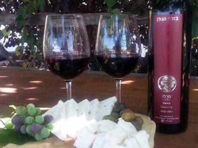 חג שבועות לאניני הטעם: המלצות לגבינות ויין