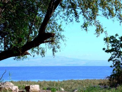 עבר,הווה,עתיד: מסלול בשביל סובב כינרת מהגרין ביץ' למגדלא