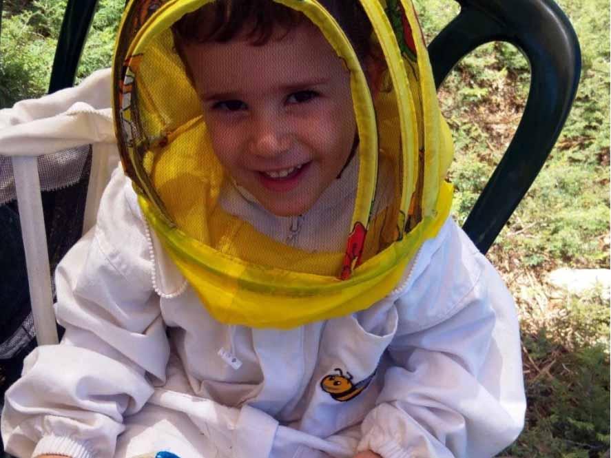 פעילות מהנה ביערת הדבש