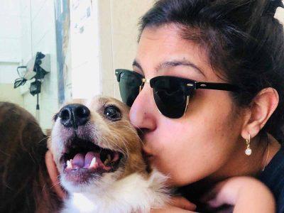 מרגש: הכלב רקס הושב לבעליו אחרי 8 חודשים