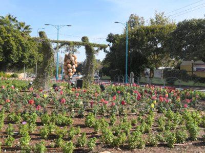 עיר הפרחים