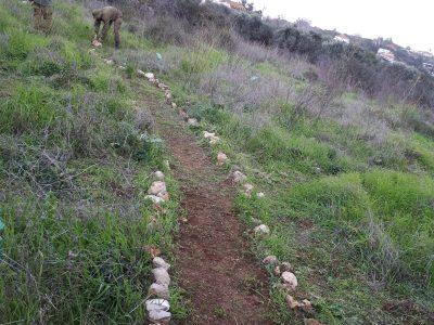 """בט""""ו בשבט: צמחים נדירים בסכנת הכחדה נזרעו בגן מקלט לצמחים שהוקם בבסיס חוות השומר"""
