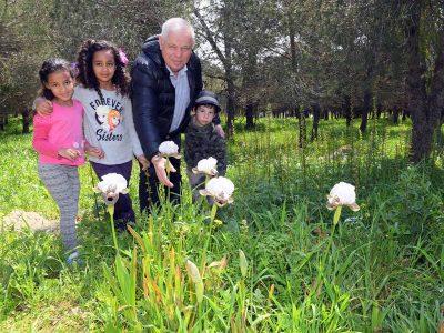 ליהנות מפריחת האביב בנצרת עילית