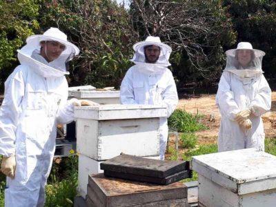 הדבוראים של המחר