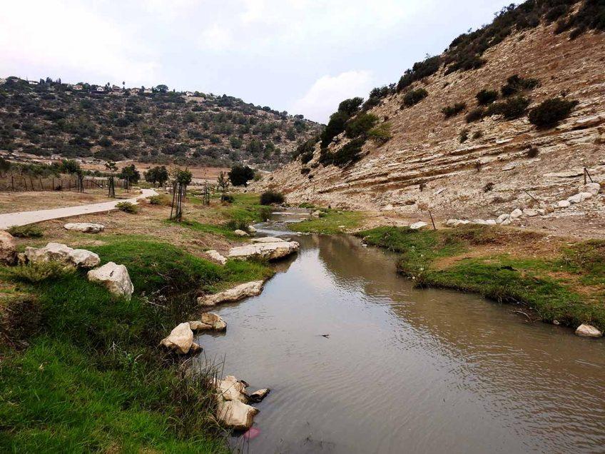 """בשבועות: טיולי """"חג המים"""" של החברה להגנת הטבע בעמק המעיינות ובנחל ציפורי בחינם"""