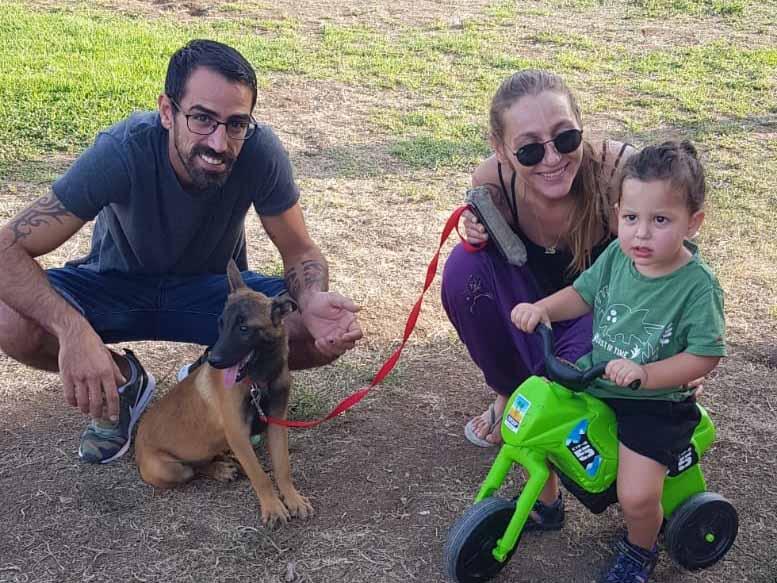 מכשכשים בזנב: 11 כלבים מצאו בית חם בפסטיבל כלבים בעפולה