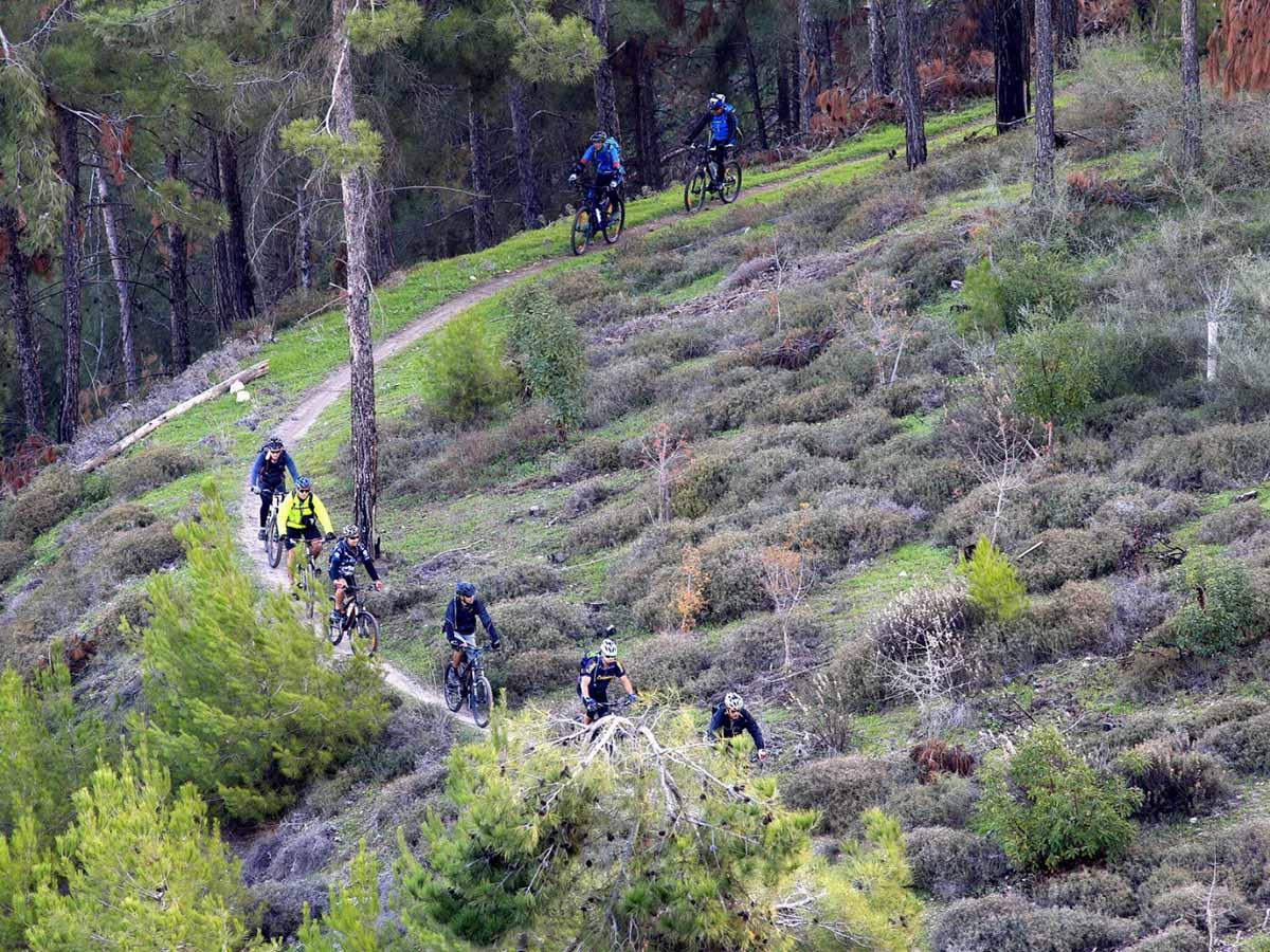 הפנינג ביער לביא צילום: מיכאל חורי
